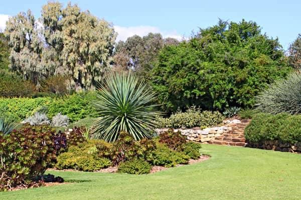 garden orientation-south facing garden-south facing plants-succulents-cacti-south facing garden design