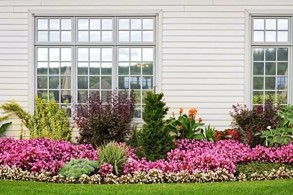 garden orientation-landscape ideas-plants for north side of house-