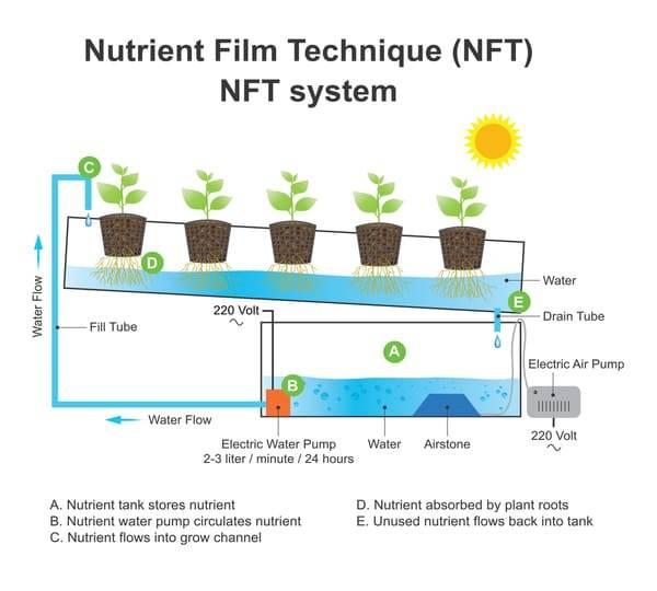 nutrient film technique-nft-hydroponics-how to build nutrient film technique
