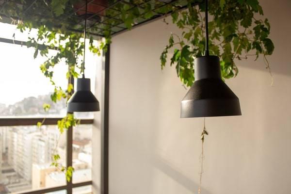 indoor vertical garden-vertical garden planters-indoor plant wall-diy indoor vertical garden