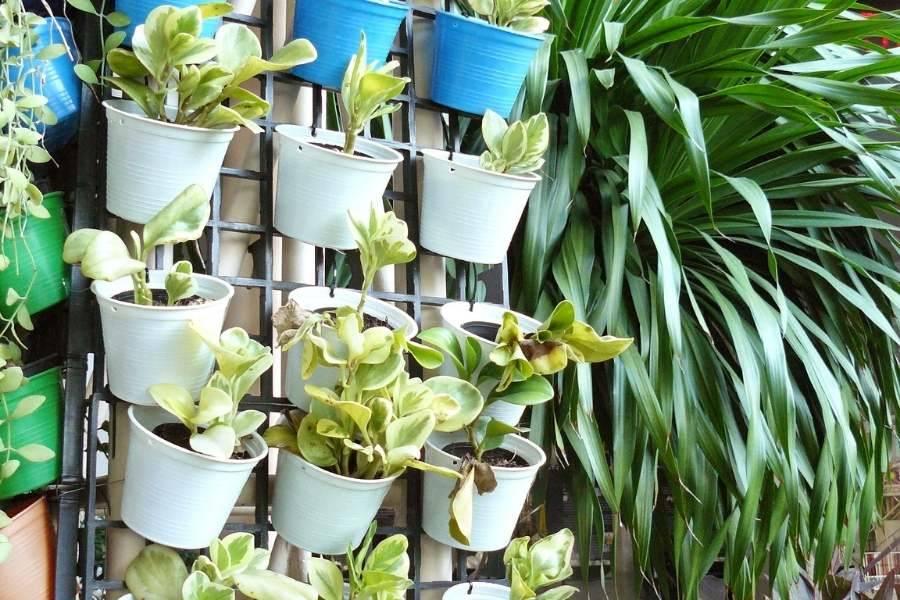 vertical garden planter-planter